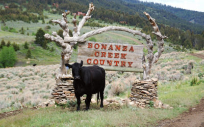 An Interview with June Voldseth of Bonanza Creek Ranch